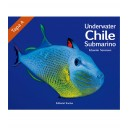 Chile Submarino